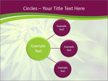 0000085868 PowerPoint Templates - Slide 79