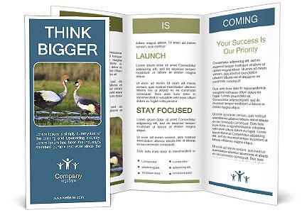 0000085872 Brochure Templates