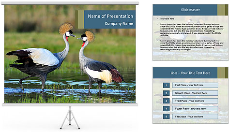 0000085872 PowerPoint Template