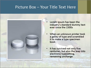 0000085872 PowerPoint Template - Slide 13