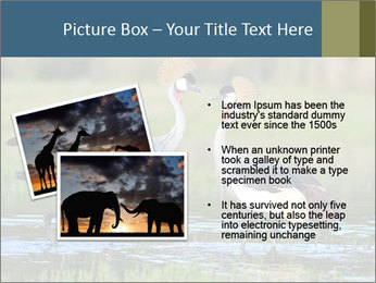 0000085872 PowerPoint Template - Slide 20
