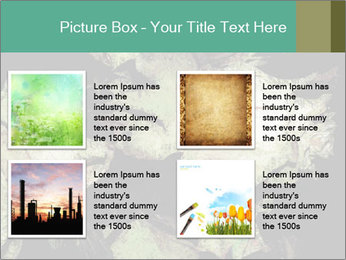 0000085886 PowerPoint Template - Slide 14