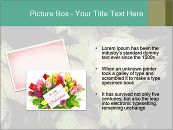0000085886 PowerPoint Template - Slide 20