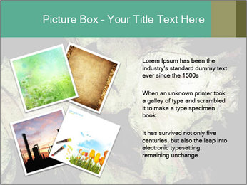0000085886 PowerPoint Template - Slide 23
