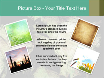 0000085886 PowerPoint Template - Slide 24