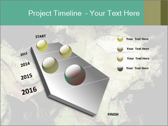 0000085886 PowerPoint Template - Slide 26