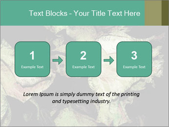 0000085886 PowerPoint Template - Slide 71