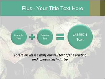 0000085886 PowerPoint Template - Slide 75
