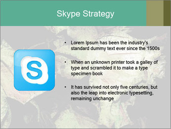 0000085886 PowerPoint Template - Slide 8