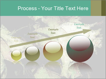 0000085886 PowerPoint Template - Slide 87