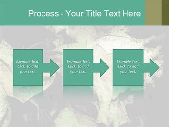 0000085886 PowerPoint Template - Slide 88