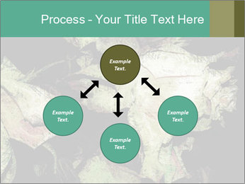 0000085886 PowerPoint Template - Slide 91