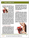 0000085892 Word Templates - Page 3