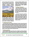 0000085901 Word Template - Page 4