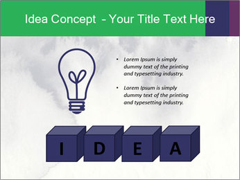 0000085908 PowerPoint Templates - Slide 80