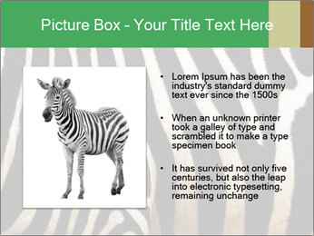 0000085909 PowerPoint Template - Slide 13