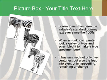 0000085909 PowerPoint Template - Slide 17