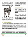 0000085909 Word Template - Page 4