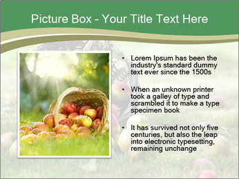 0000085918 PowerPoint Template - Slide 13