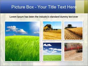 0000085926 PowerPoint Templates - Slide 19