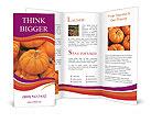 0000085928 Brochure Templates