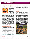 0000085928 Word Templates - Page 3