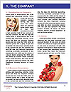 0000085932 Word Templates - Page 3