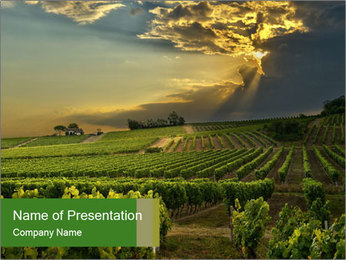 0000085942 PowerPoint Template