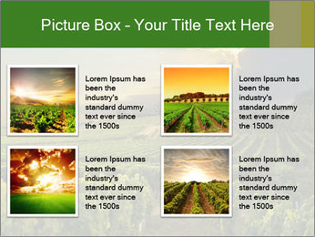 0000085942 PowerPoint Template - Slide 14