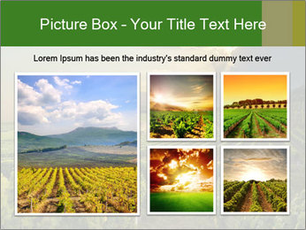 0000085942 PowerPoint Template - Slide 19