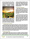 0000085942 Word Templates - Page 4