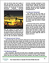 0000085947 Word Template - Page 4