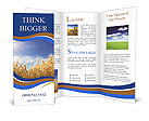 0000085948 Brochure Template