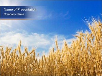 0000085948 PowerPoint Template - Slide 1