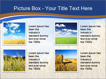 0000085948 PowerPoint Templates - Slide 14