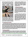 0000085952 Word Template - Page 4