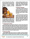 0000085957 Word Templates - Page 4