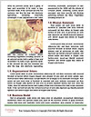 0000085961 Word Template - Page 4