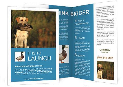 0000085982 Brochure Template