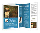 0000085982 Brochure Templates