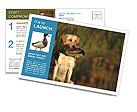 0000085982 Postcard Templates