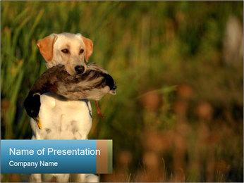 0000085982 PowerPoint Templates - Slide 1