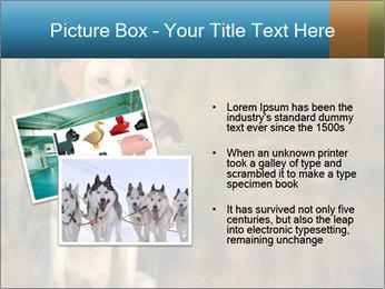 0000085982 PowerPoint Templates - Slide 20