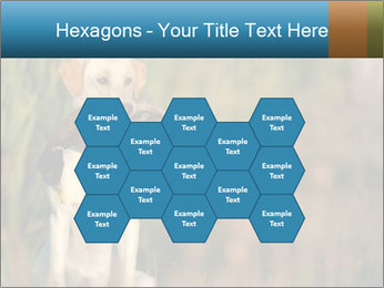 0000085982 PowerPoint Templates - Slide 44