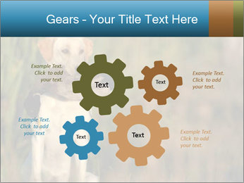 0000085982 PowerPoint Templates - Slide 47