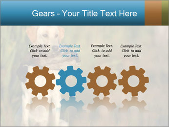 0000085982 PowerPoint Templates - Slide 48