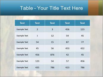 0000085982 PowerPoint Templates - Slide 55