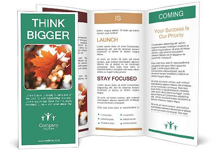 0000085989 Brochure Template