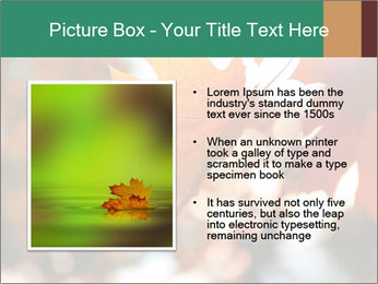 0000085989 PowerPoint Template - Slide 13