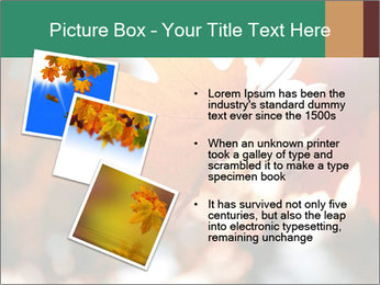 0000085989 PowerPoint Templates - Slide 17